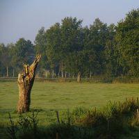 Natuurhistorisch Genootschap in Limburg