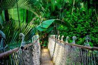 Jungle Festival 2022