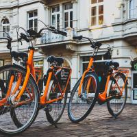 Haagse Hoogtepunten Fiets Tour / The Hague Highlights Bike Tour